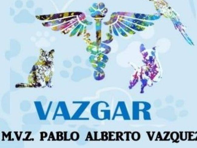 Servicios Veterinarios «Vezgar»