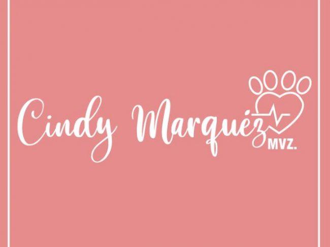 Veterinaria Cindy Marquéz