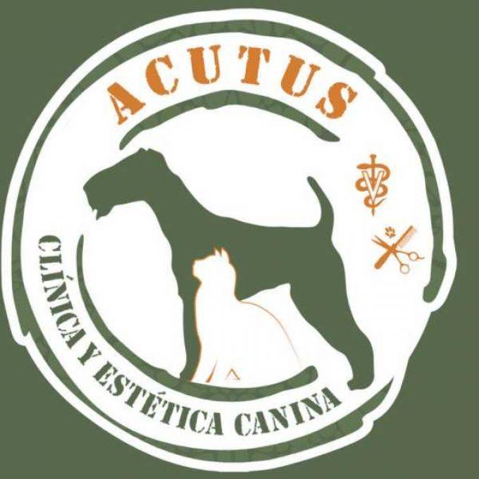 Acutus Clínica y Estética Canina