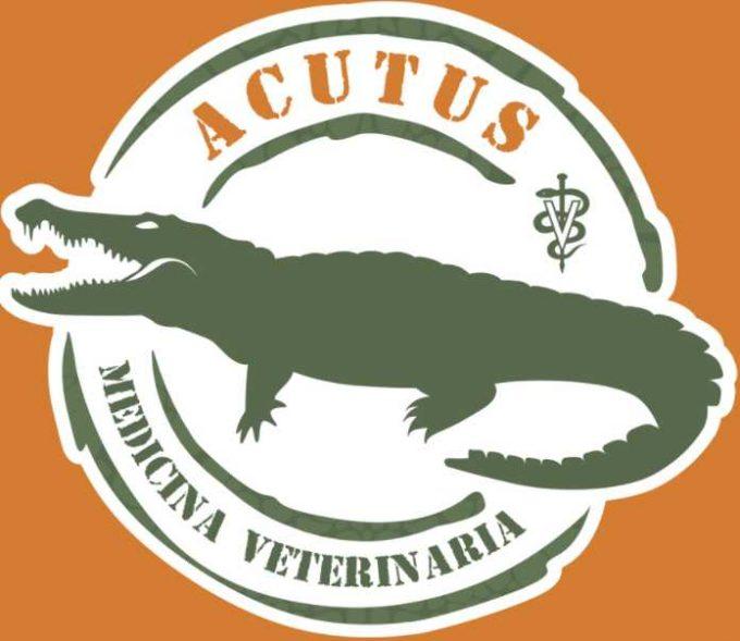 Acutus Medicina Veterinaria