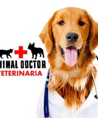 Animal Doctor Veterinaria