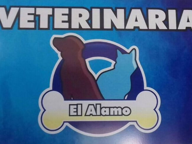 Clínica Veterinaria El Alamo