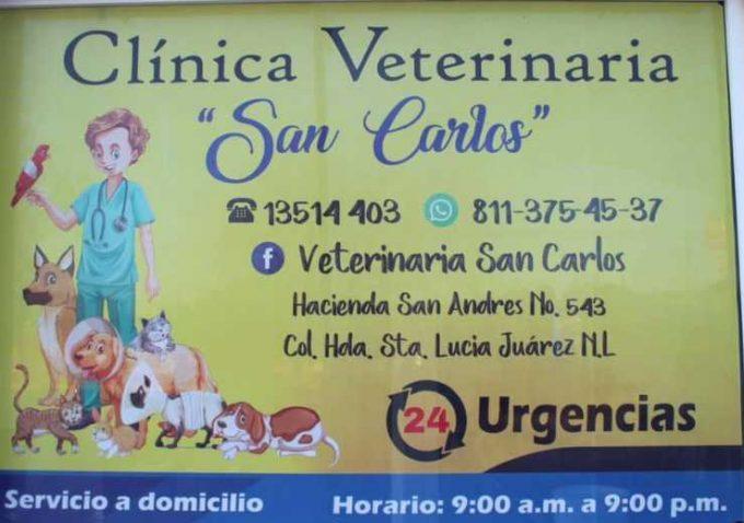 Veterinaria San Carlos