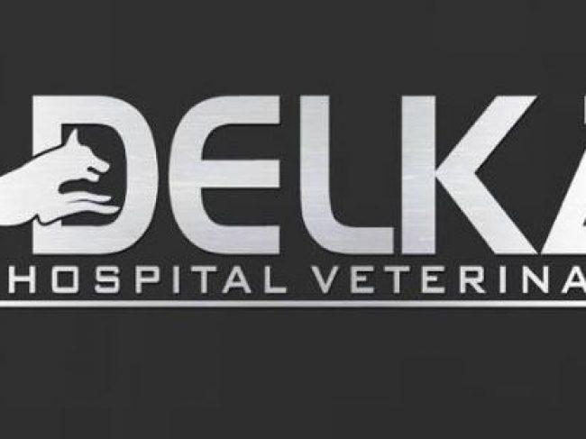 DELKA Hospital Veterinario