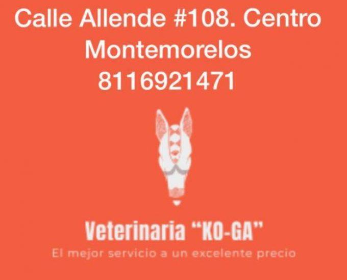 Farmacia Y Clínica Veterinaria «KO-GA»