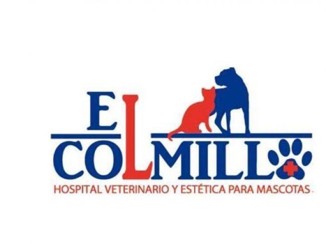 Hospital Veterinario «El Colmillo»