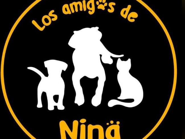 Los Amigos De Nina