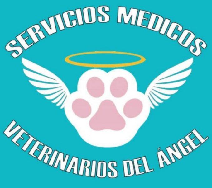 Servicios Medicos Veterinarios «Del Angel»