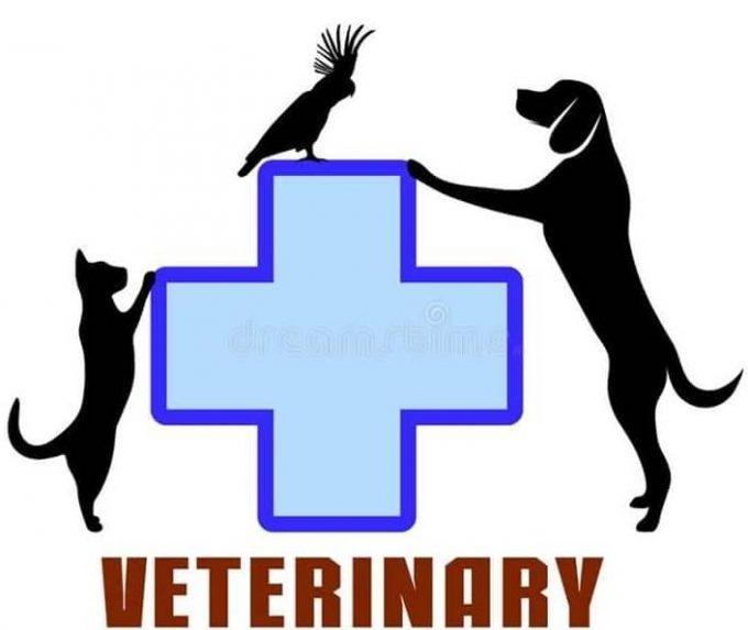 Veterinaria Cure Pet's