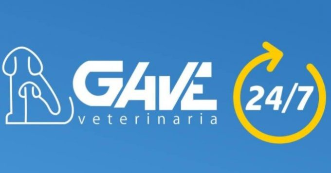Veterinaria GAVE