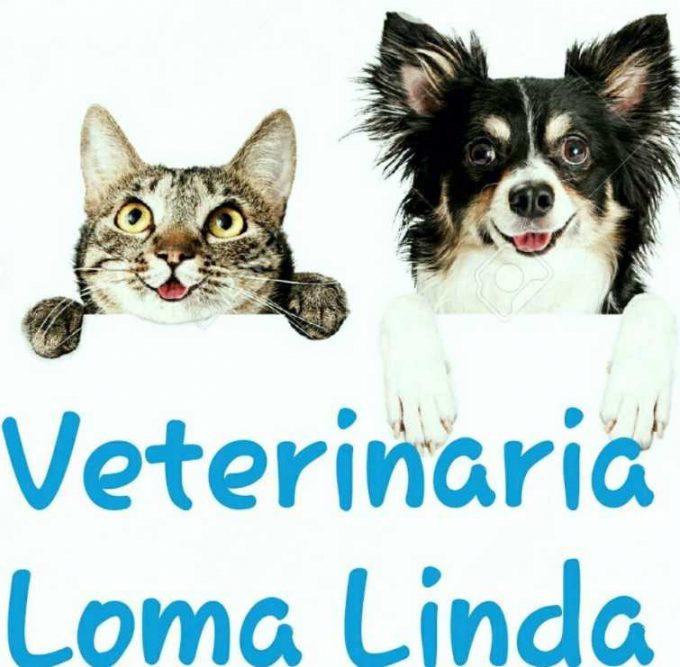 Veterinaria Loma Linda