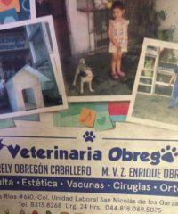 Veterinaria Obregón