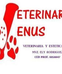 Veterinaria Venus