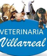 Veterinaria Villarreal