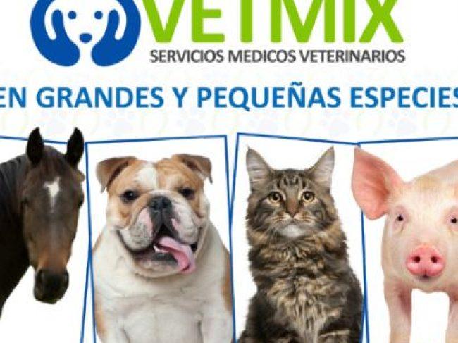Vetmix